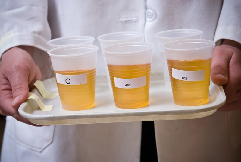 The Untold Truth Of Taking An Instant Drug Test