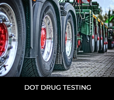 OVUS MEDICAL DOT DRUG TESTING
