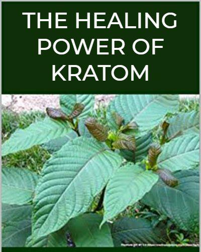 OVUS MEDICAL THE HEALING POWER OF KRATOM