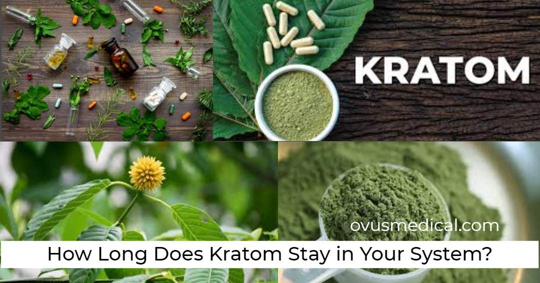 ovus medical How Long Does Kratom Stay in Your System?