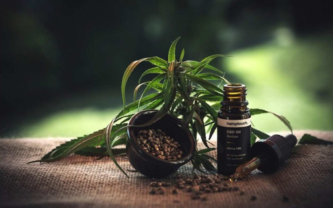 Ovus Medical - Does CBD Oil Show Up On a Drug Test?