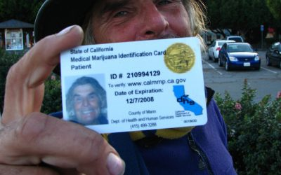 Can You Drug Test an Employee with a Medical Marijuana Card?