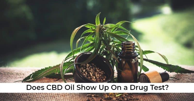 ovus medical Does CBD Oil Show Up On a Drug Test?