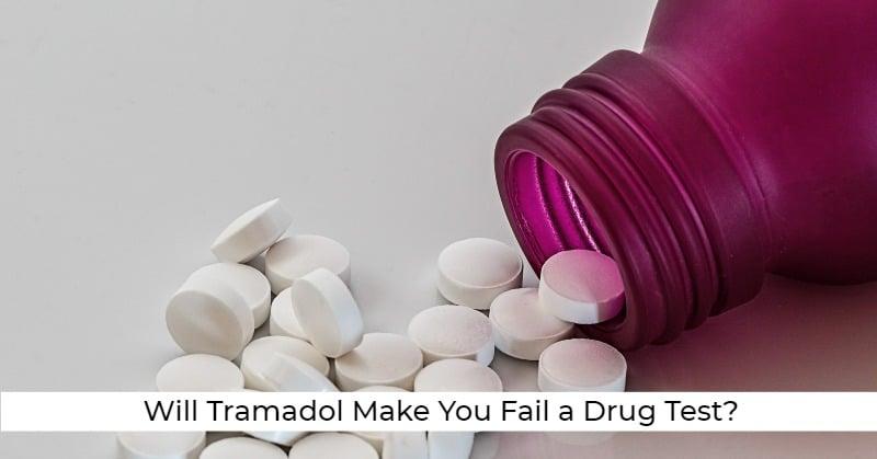 ovus medical Will Tramadol Make You Fail a Drug Test?