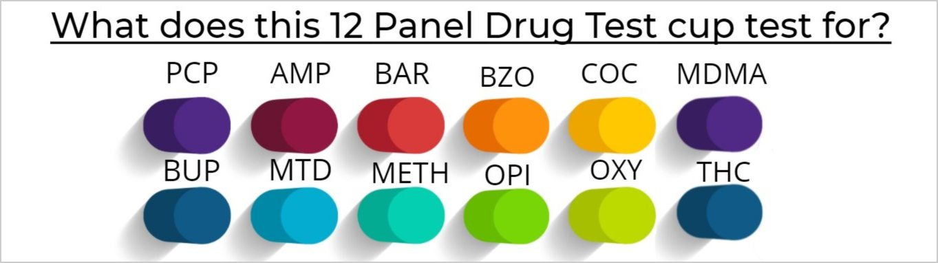 What does a 12 Panel Drug Test cup test for