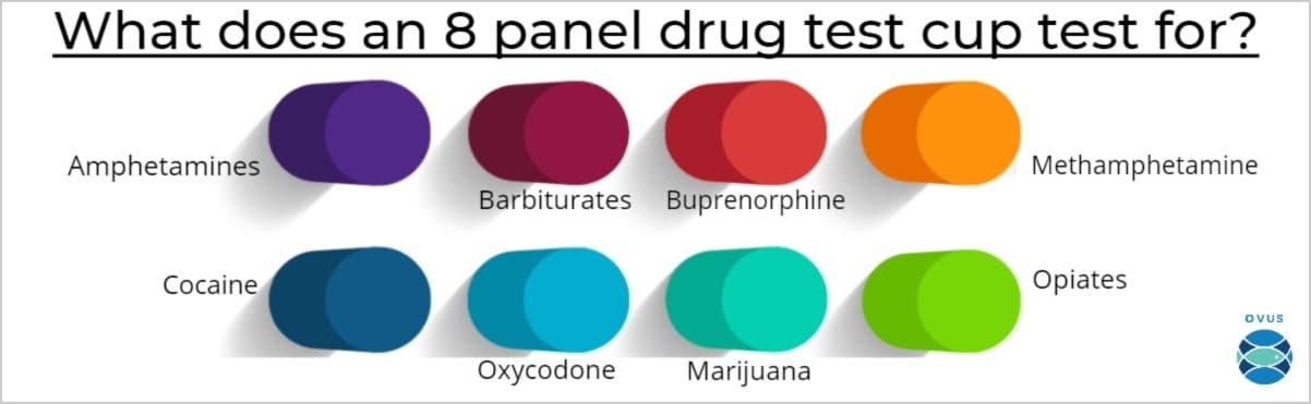ovus medical What does an 8 panel drug test cup test for