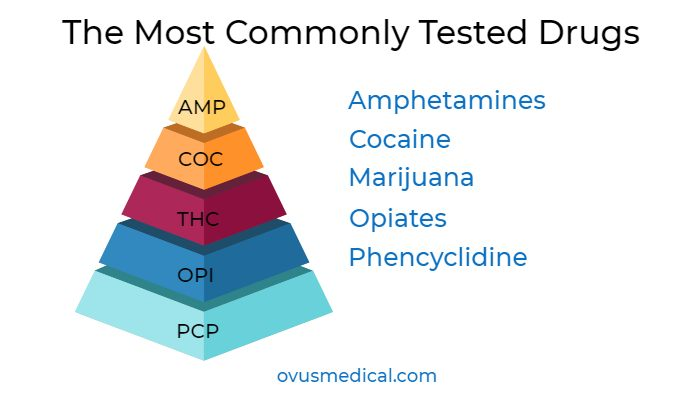 ovus medical The Most Commonly Tested Drugs