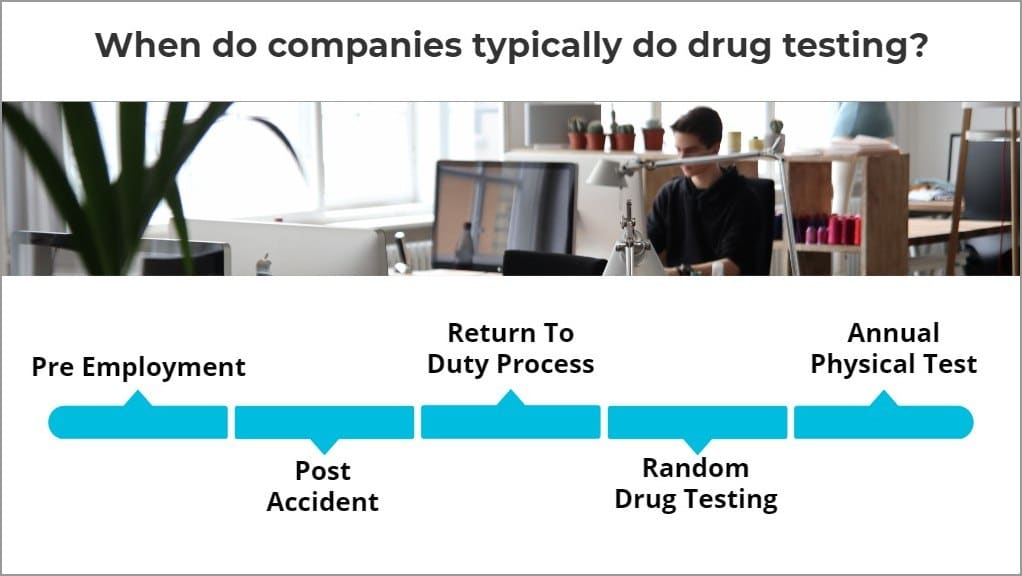 ovus medical When do companies typically do drug testing_