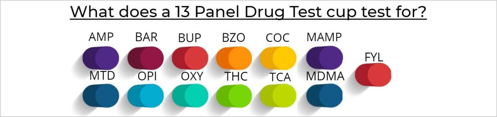 What does a 13 Panel Drug Test cup test for