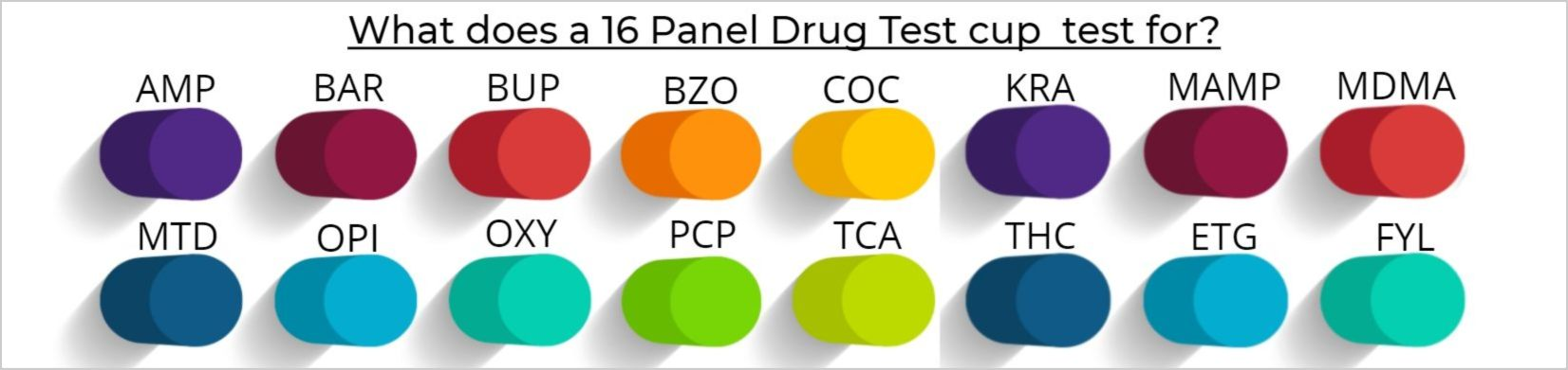 What does a 16 Panel Drug Test cup test for