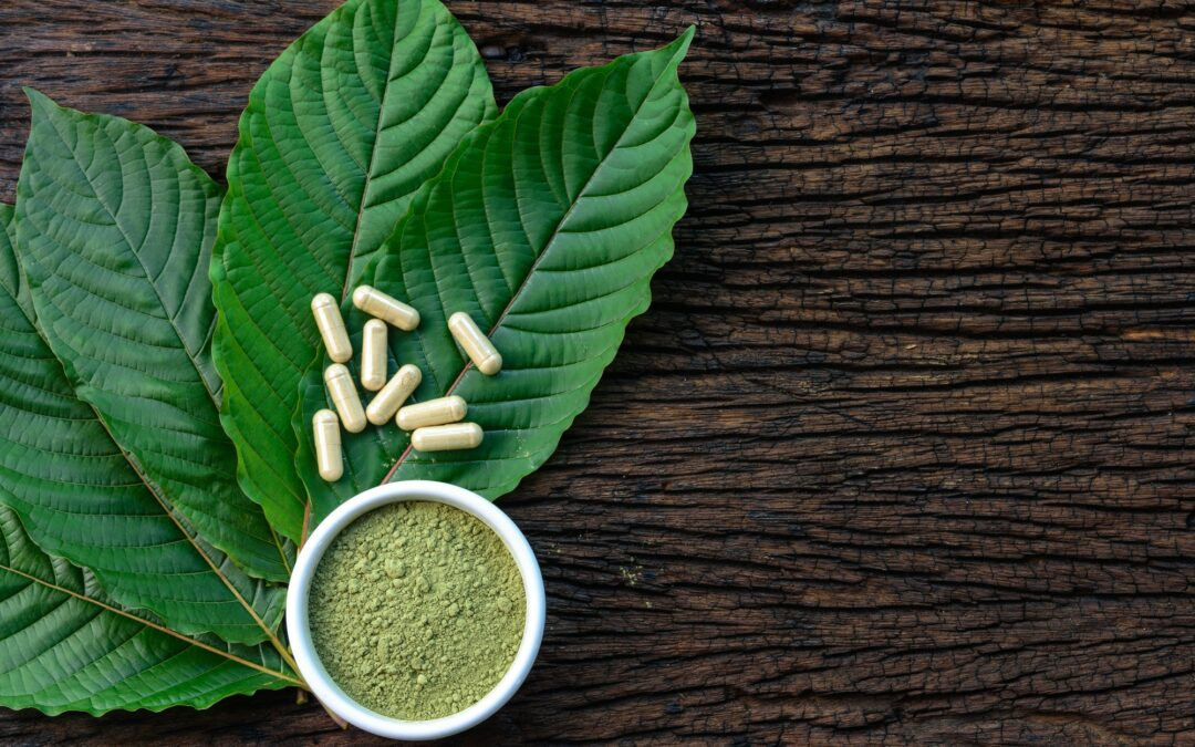 ovus medical kratom leaves with medicinal products in capsules and powder in white ceramic bowl and wooden table, top view
